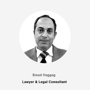 Lawyer & Legal Consultant